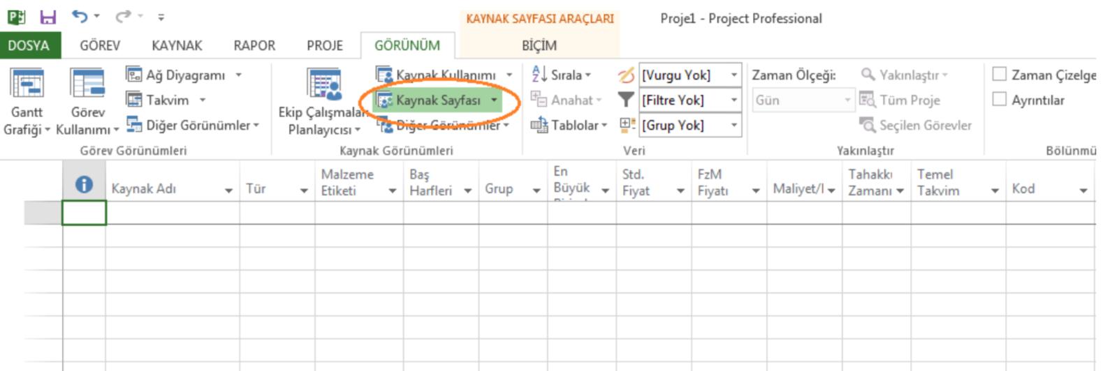 Microsoft Project Kaynak Yönetimi